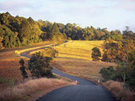 Road to the Bunya Mountains National Park