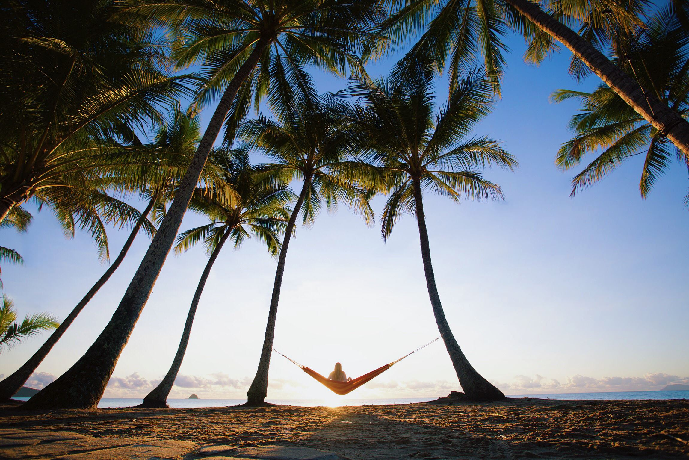The perfect spot to hang a hammock at Palm Cove
