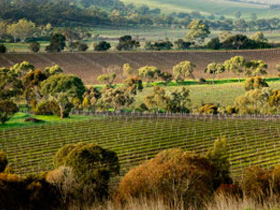 Watervale, Clare Valley, South Australia
