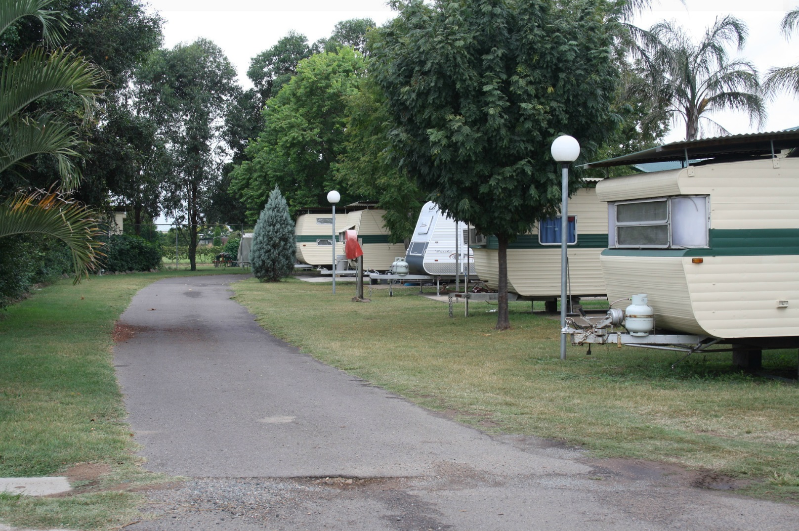Wyland Caravan Park - Singleton photo 4