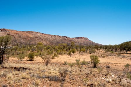 G'Day Mate Tourist Park - Alice Springs photo 8