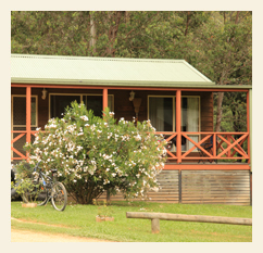 Harrietville Cabins & Caravan Park - Harrietville photo 1