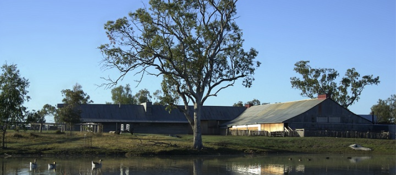 The Woolshed at Jondaryan - Jondaryan photo 6