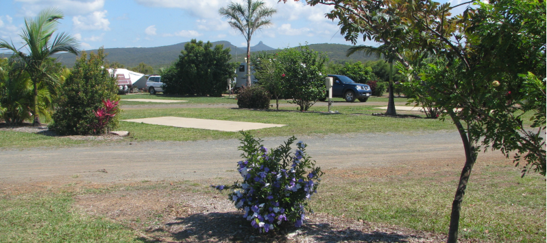 Cape Palmerston Holiday Park - Ilbilbie photo 2