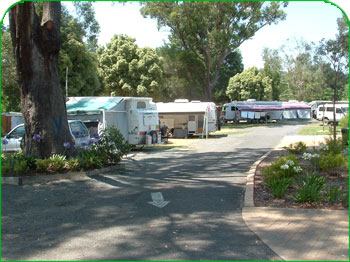 Mittagong Caravan Park - Mittagong photo 6