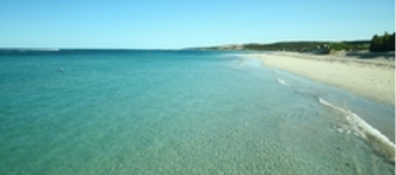 Horrocks Beach Caravan Park - Horrocks photo 9