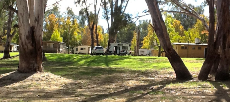 Darlington Point Riverside Caravan Park - Darlington Point photo 5