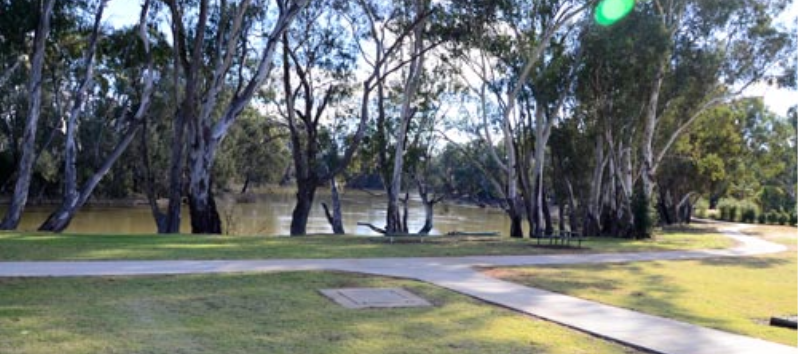 Tooleybuc Caravan Park - Tooleybuc photo 3