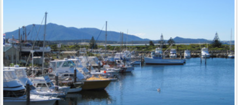 BIG4 Wallaga Lake Holiday Park - Bermagui photo 4