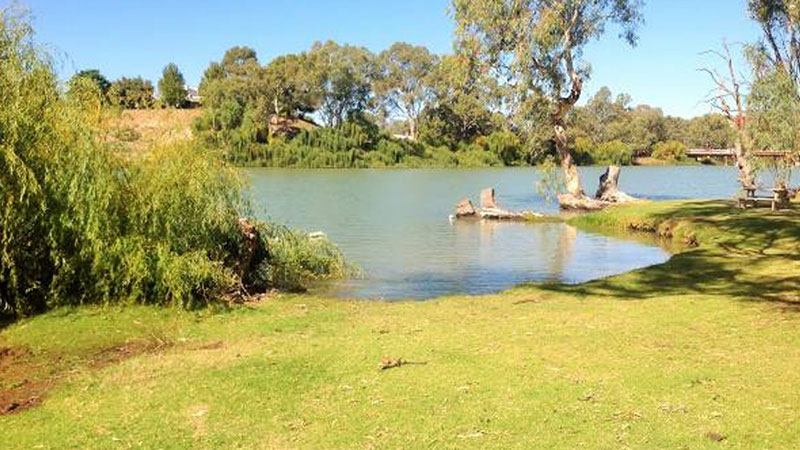 Riverbend Caravan Park - Renmark photo 67