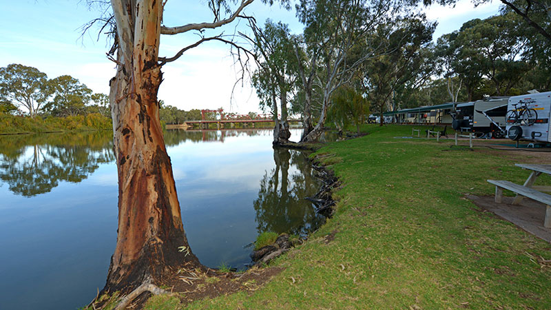 Riverbend Caravan Park - Renmark photo 74