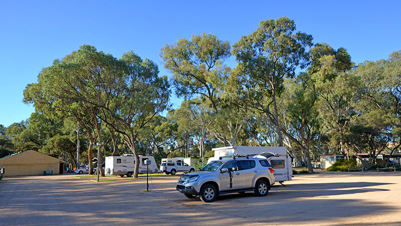 Riverbend Caravan Park - Renmark photo 76