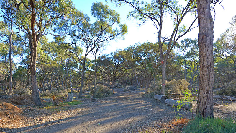 Riverbend Caravan Park - Renmark photo 81