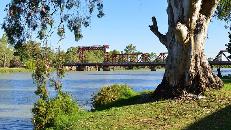 Riverbend Caravan Park - Renmark photo 68