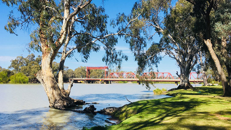 Riverbend Caravan Park - Renmark photo 11