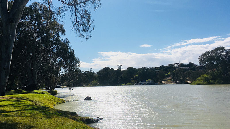 Riverbend Caravan Park - Renmark photo 70