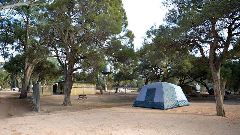 Riverbend Caravan Park - Renmark photo 78
